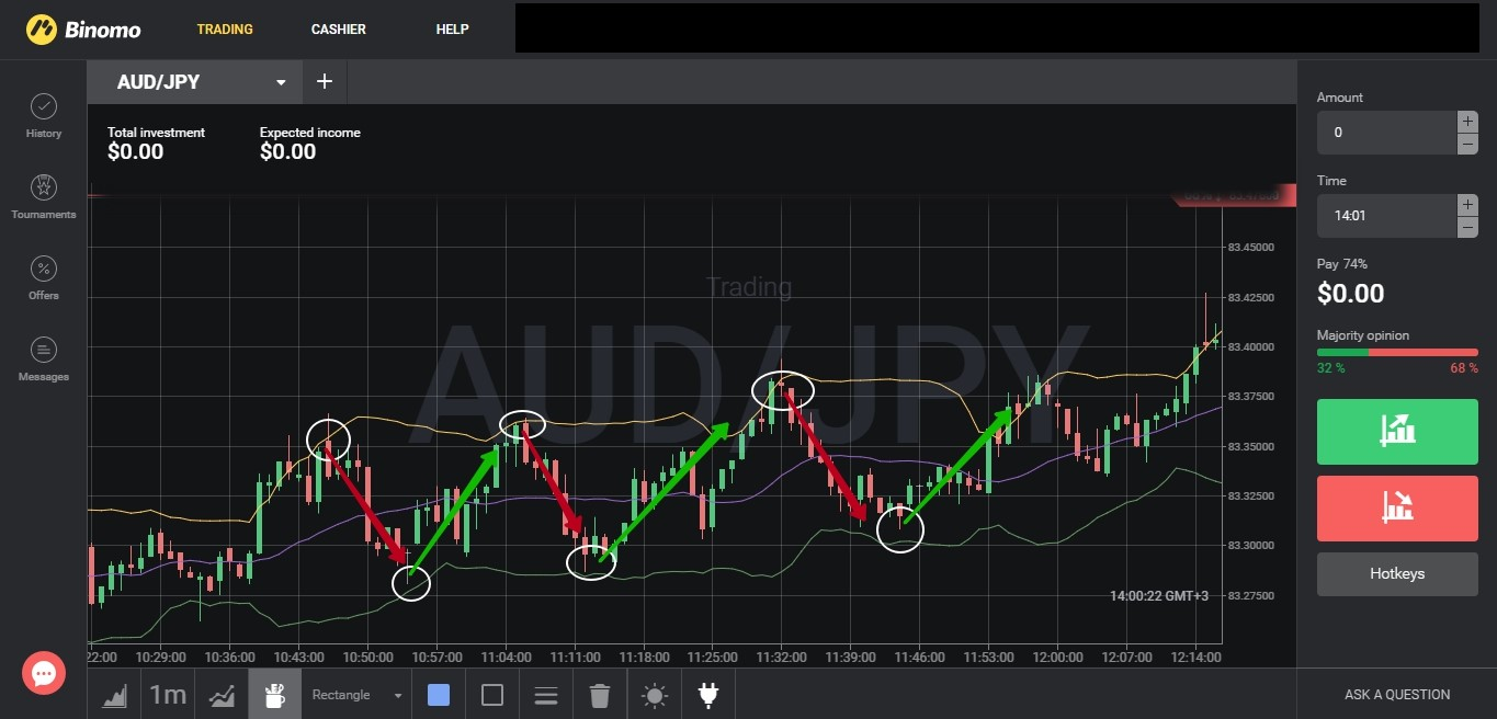 Trading processes on the binary market